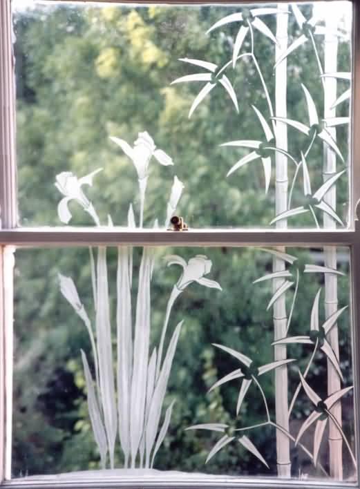 Iris and bamboo - On bathroom window